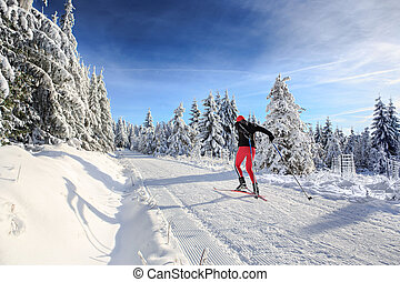 cross-country skiing - A man cross-country skiing on the...