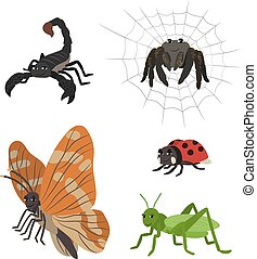 Cartoon set scorpion spider butterfly ladybug grasshopper