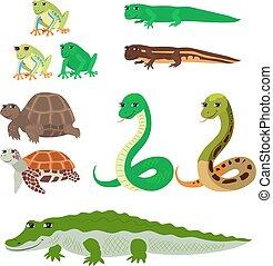 Cartoon set tree frog newt aquatic turtle snake crocodile -...