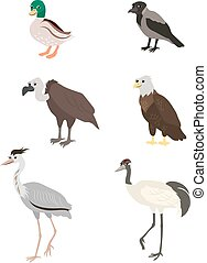 Cartoon set duck crow buzzard eagle crane heron - Vector...