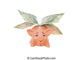 piggy with money - fly money-box piggy with money on white...