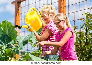 Family gardening in vegetable garden