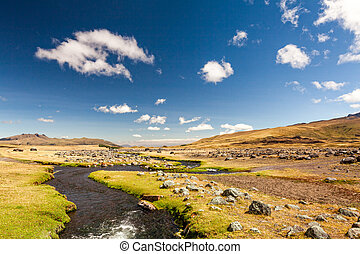 Cotopaxi Volcano National Park - Cotopaxi National Park In...