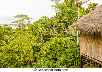 Simple Amazonian Hut - Dense Vegetation And Hut In Amazonian...