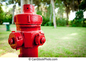 Red hydrant fire prevention system in green wood - Red...