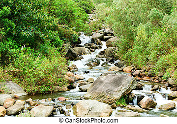 Humid Forest River - Volcanic Rocks In A Small River Close...