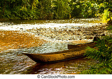 Canoes In Amazon Basin