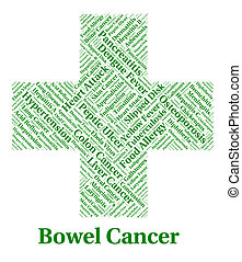 Bowel Cancer Indicates Large Intestines And Affliction -...