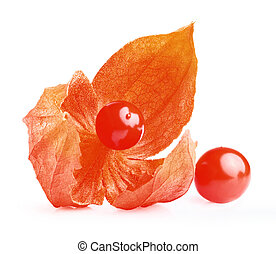 cape Gooseberry - Close up of cape Gooseberry or Physalis...