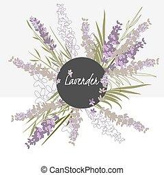 illustration Delicate lavender flower