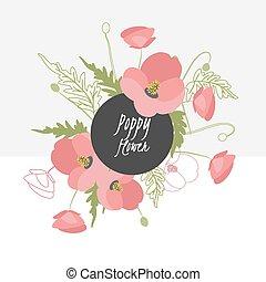 illustration Delicate poppy flower