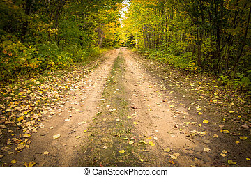 Down The Dirt Road - Remote country road surrounded by the...