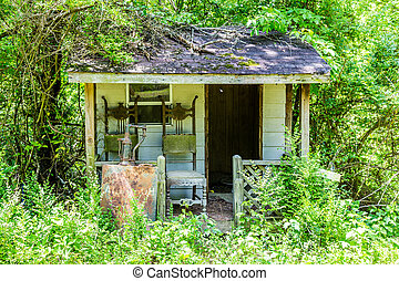 Old Shack Overgrown in Woods - An Old Shack Overgrown in...