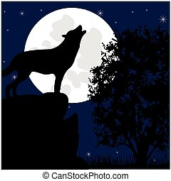 Wolf on stone in the night