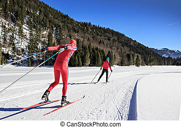 cross-country skiers - A group of cross-country skiers on...