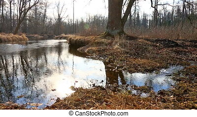 Sky reflecting in water during spring tide - Spring tide in...