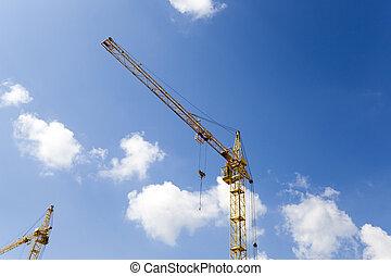 Cranes   close up