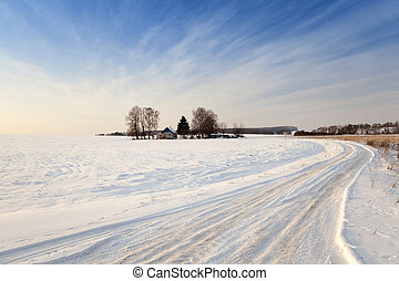 winter road with snow - a small country road passes in a...