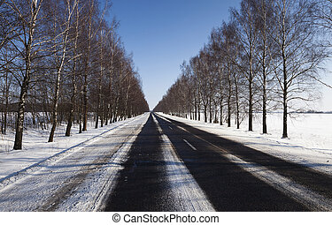 winter road with snow - photographed road in the winter....