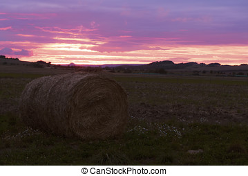 countryland wit sunset