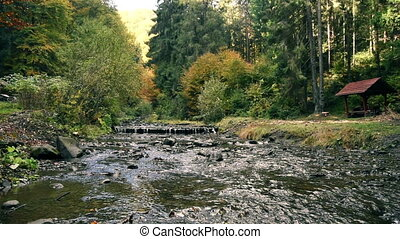 Mountain stream river with rapids - Impetuous mountain...