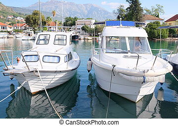 passenger boat - The image of an passenger motor boat in a...