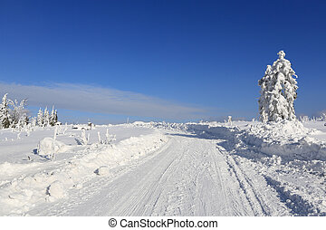 Winter landscape and trails for skiers - Winter sunny...