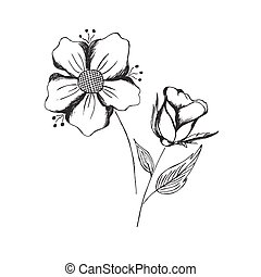 flowers - hand, draw, sketch, flowers, vector, illustration,...