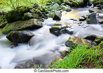 Pyrenees - silky stream in a forest. Valley of Aspe,...