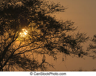 sunset in Africa - beautiful sunset in Africa