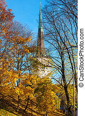 Autumn park Tallinn Estonia - View of autumn park in Tallinn...