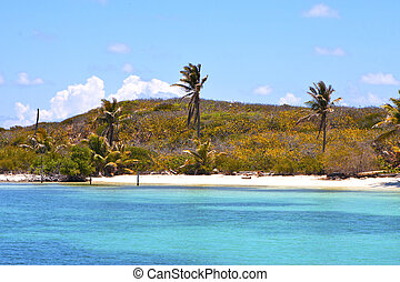 isla contoy in mexico froath and blue - blue isla contoy in...