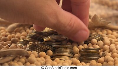 Taking profit from soybean harvest, man picking coins from...