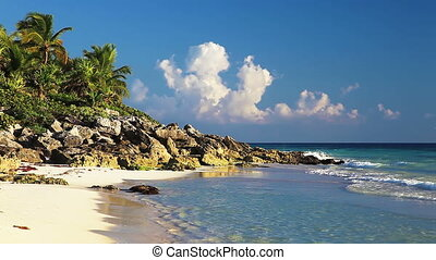 Beautiful Wild Beach - Beautiful wild beach of the Caribbean...