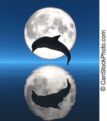 moon - dolphin, moon and reflection