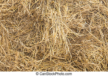 haybale in closeup