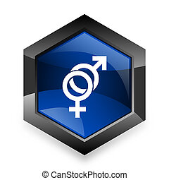 sex blue hexagon 3d modern design icon on white background