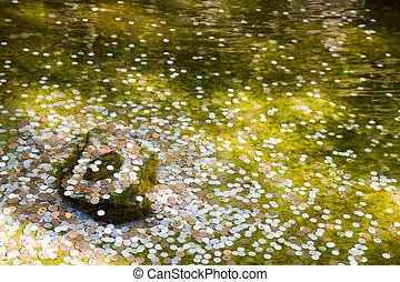 Coins in a wishing well in Kyoto - Japanese coins in a...