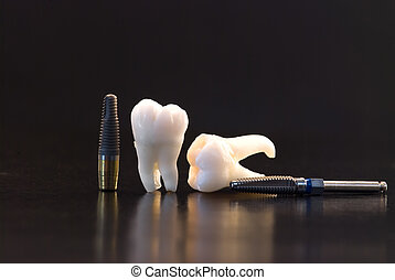 dental implant - Human wisdom teeth and dental titanium...