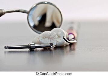 儀器, 牙齒, 牙齒