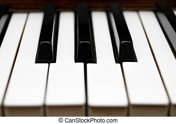 Piano Keys Musical Instrument - Piano Keys Black and White...