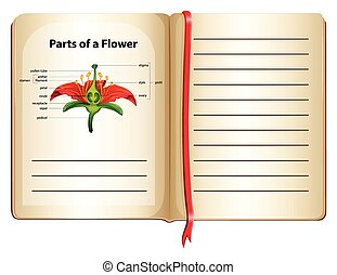 Parts of flower on a book