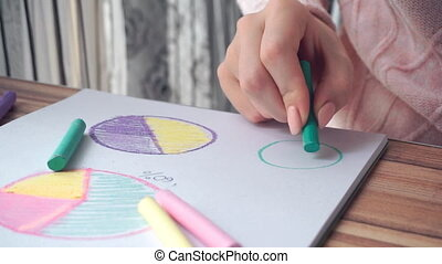 Woman drawing different business math graphs: pie charts,...
