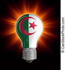 Light bulb with Algerian flag Image with clipping path