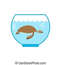 Sea turtle in an aquarium. Water animal Pet in captivity.