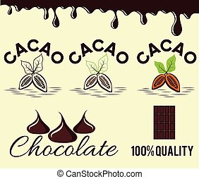 set of cacao beans and chocolate