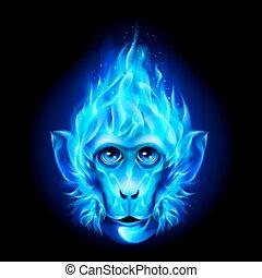 Monkey head in fire