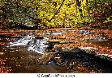 Autumn Waterfall - A small waterfall on Brandywine Creek in...