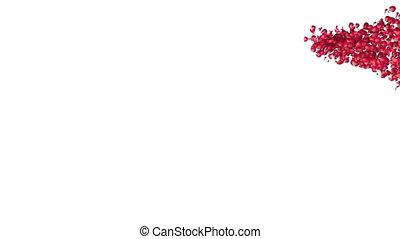 heart flower 03