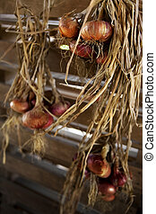 Onions hanged in a storeroom - Rustic onions hanged in a...